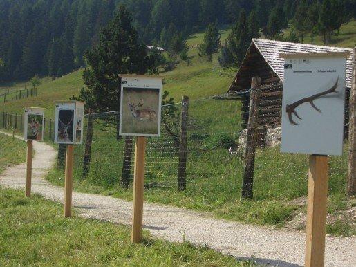 Il sentiero natura Zannes